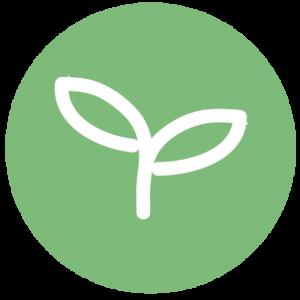 Kiwi Tree Designs Logo Favicon